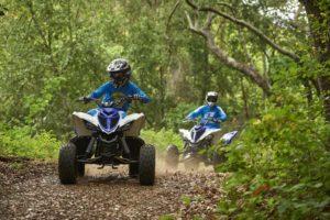 Yamaha-ATV-Raptor-90-16RPT90_700R_BL_A1_48